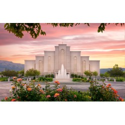 Albuquerque New Mexico Temple Recommend Holder